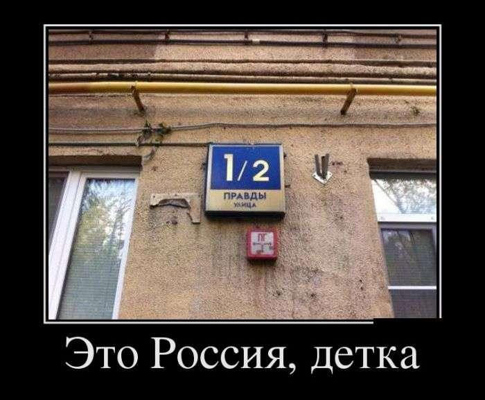 Демотиваторы №1527 (30 фото)
