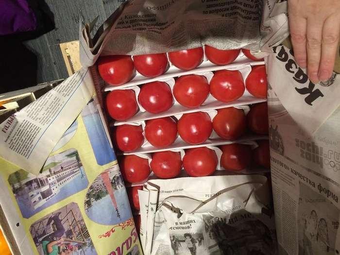 Продавец хурмы сделал подарок московскому детскому хоспису