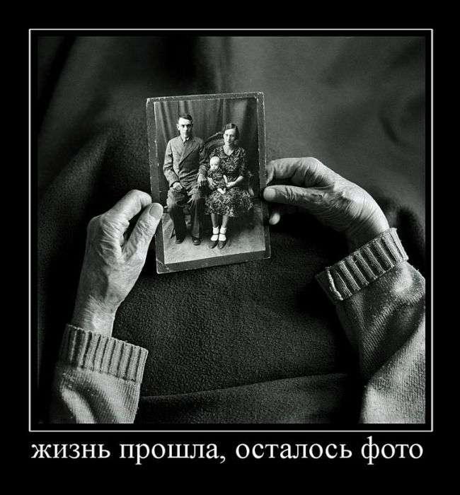 Демотиваторы №1548 (30 фото)