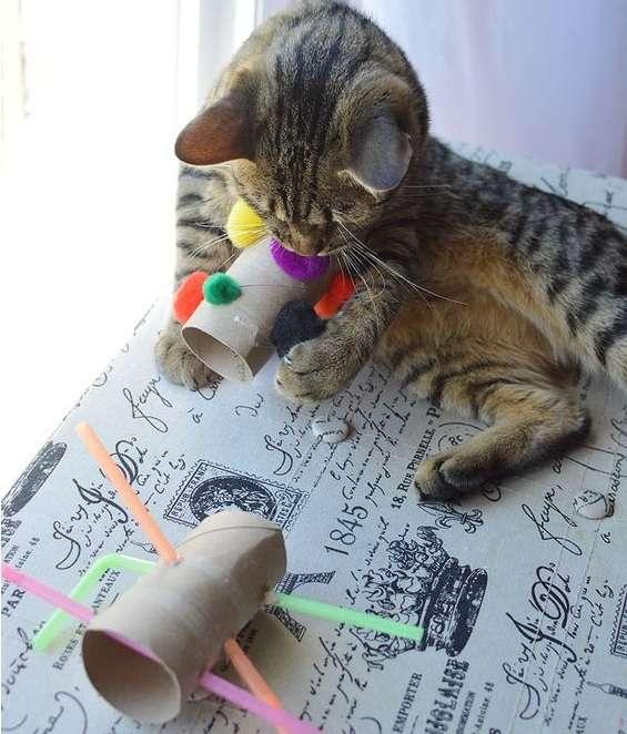 Погремушка для кота своими руками