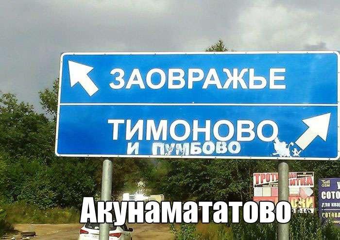 Подборка прикольных фото №1559 (101 фото)