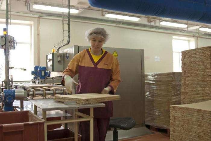 Экскурсия на кондитерскую фабрику (40 фото)