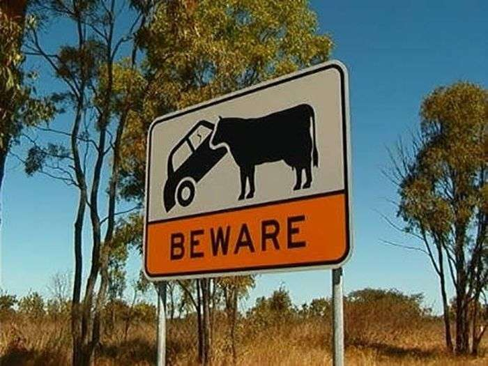 Только в Австралии