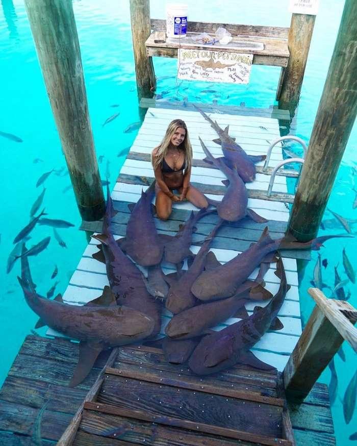 Студентка, которая путешествует по миру, чтобы сфотографироваться с невероятными морскими существами (21 фото)