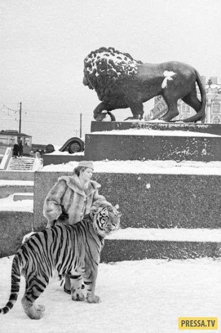 Редкие и исторические фотографии со всего мира (25 фото)