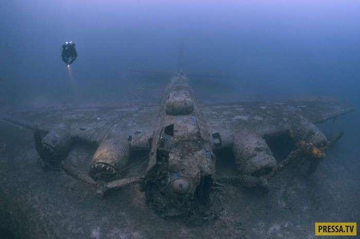 Лучшие подводные фотографии по итогам конкурса Underwater Photographer of the Year (29 фото)