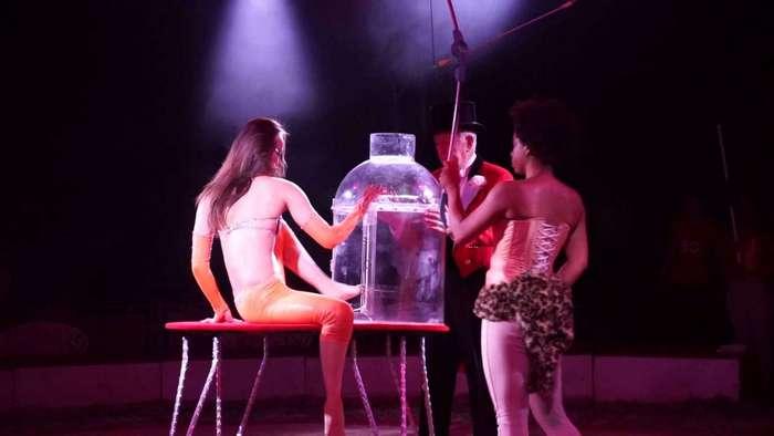 Гуттаперчевая девушка, залезающая в бутыль, поразила зрителей (видео)