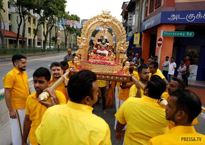 Индуистский праздник Тайпусам (26 фото)