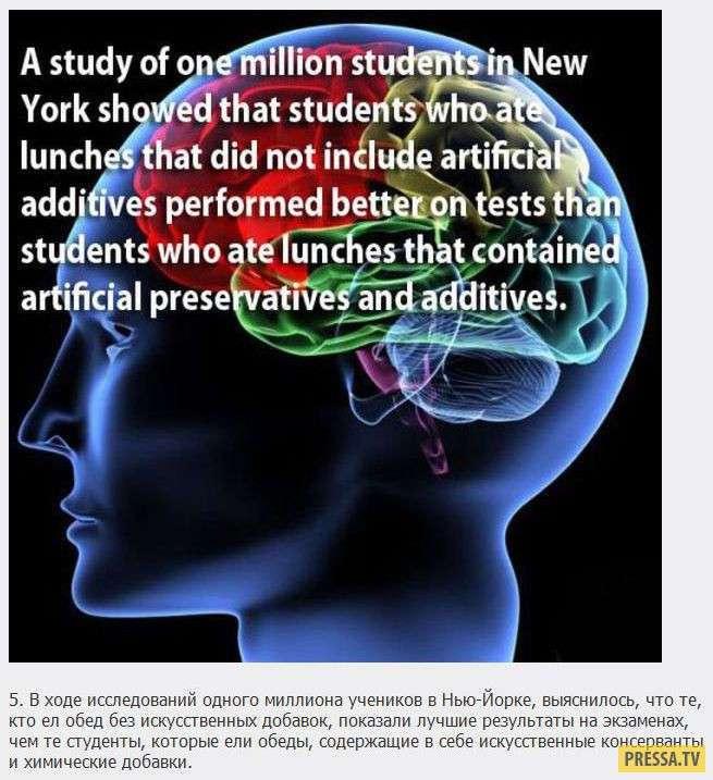 ТОП-18 интересных и загадочных фактов о мозге человека (18 фото)