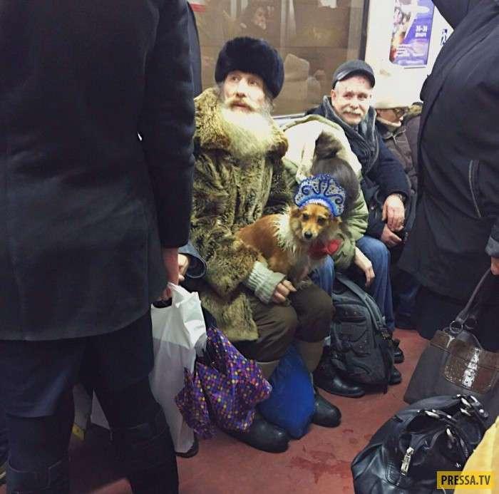 Модные граждане из российского метро, часть 25 (35 фото)