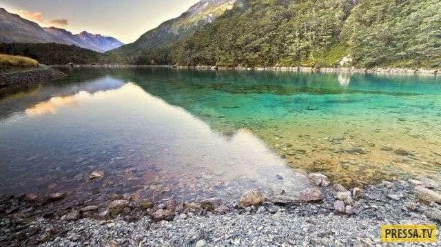 Нетронутый уголок природы в Новой Зеландии (12 фото)