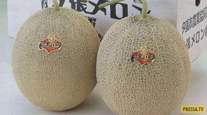 ТОП-10 безумно дорогих продуктов питания в Японии (10 фото)