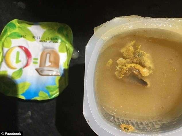 Британская фирма выпустила детское питание с плесенью и личинками!