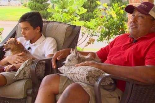 Топ-10: невероятные истории про вернувшихся домой питомцев