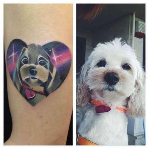Топ-12: самые милые татуировки с собаками