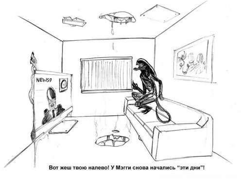 """Прикольные картинки про """"Чужих"""" (20 шт)"""