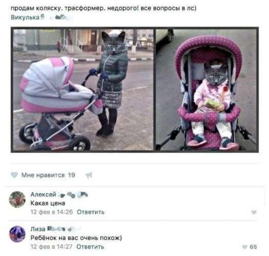 Комменты из соцсетей (20 фото)