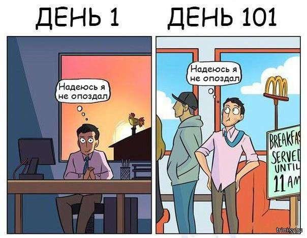 Ощути разницу в отношении к своей работе (6 фото)