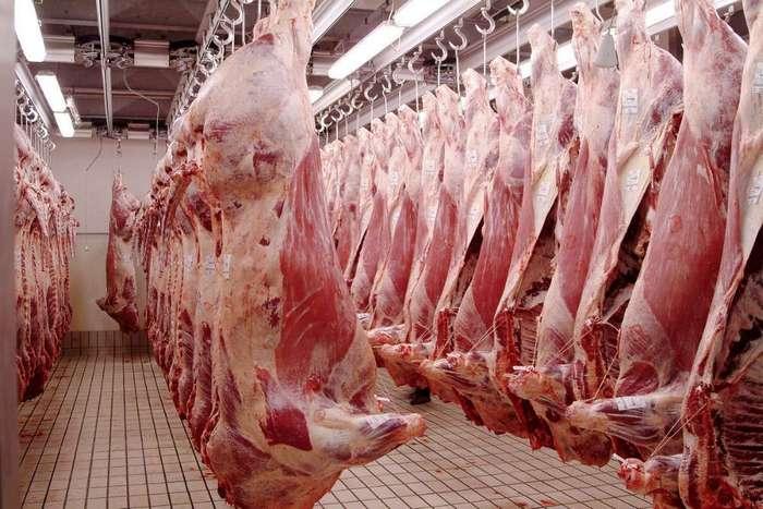 Действительно ли нужно перестать есть мясо? 10 опровергнутых законов вегетарианства