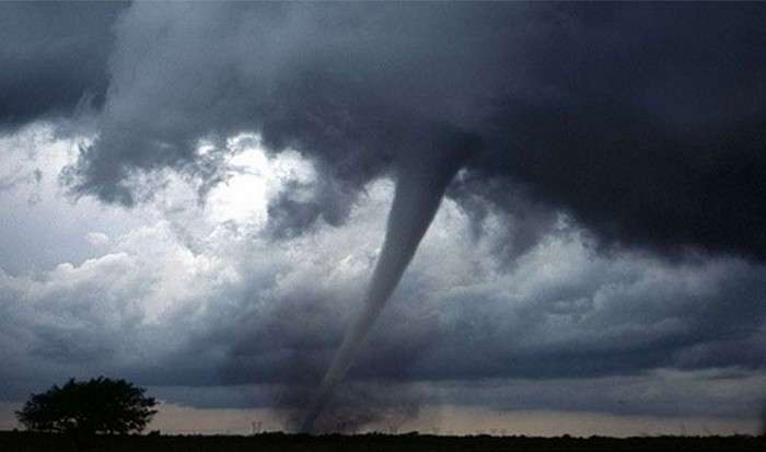 15 печальных фактов, связанных с изменением климата на земле