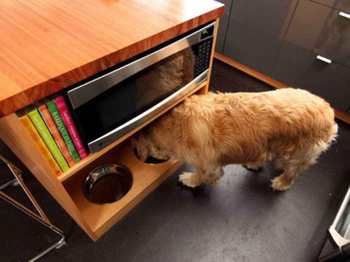 15 гениальных лайфхаков для владельцев кошек и собак, которые облегчат уход за питомцами