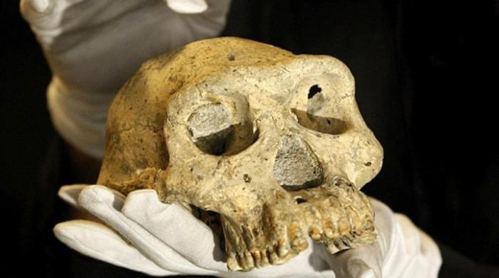 15 археологических артефактов, по поводу которых не утихают споры ученых