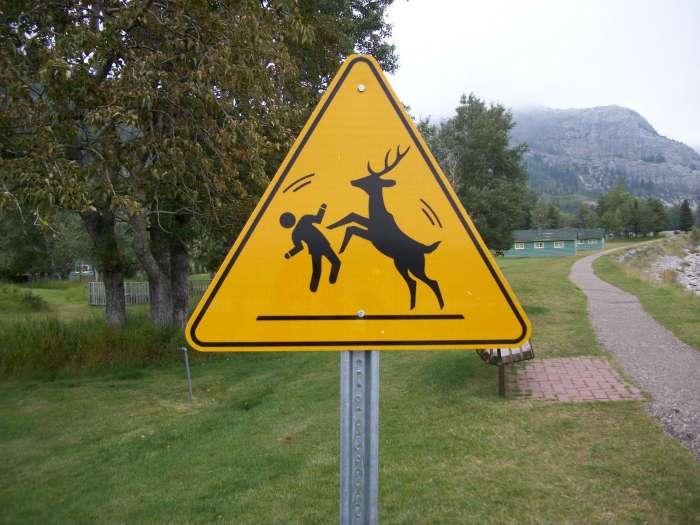 17 забавных дорожных знаков и указателей, которые, несомненно, заставят улыбнуться