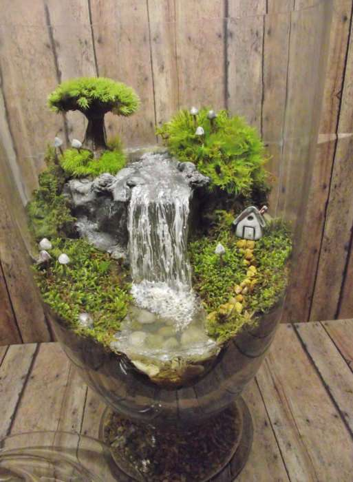 16 оригинальных идей, как создать небольшой декоративный террариум своими руками