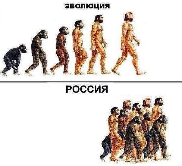 минуту представим эволюция в мире моды смешные картинки договор, или контракт