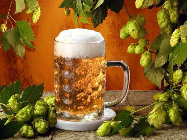 Почему нужно пить пиво: ученые признали его самым полезным в мире напитко