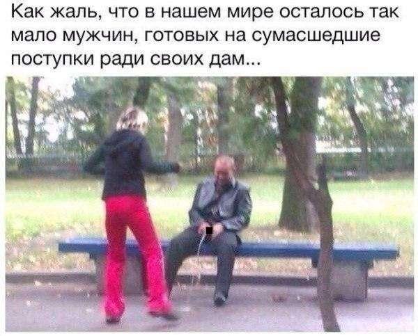 Вестник соцсетей