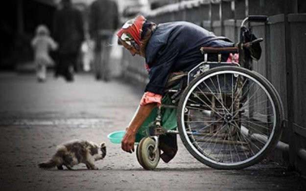 Добрые поступки благородных людей