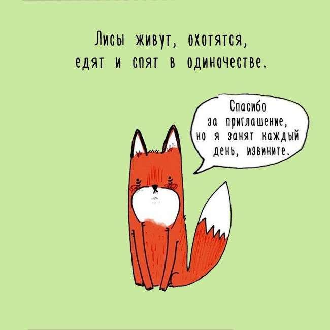 Жизнь животных о которой мы не знаем