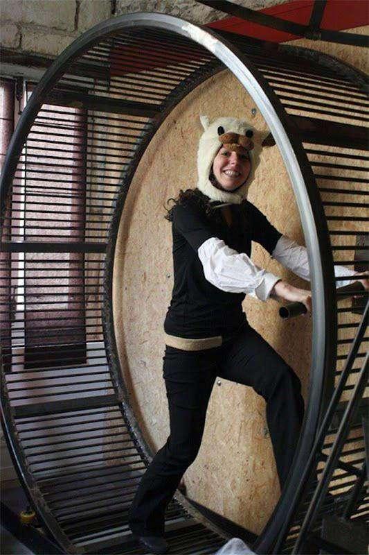 La Villa Hamster - отель только для -хомяков- (Франция)