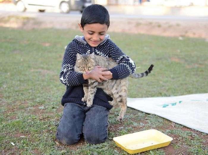 Маленький беженец не оставил раненую собаку до самого конца