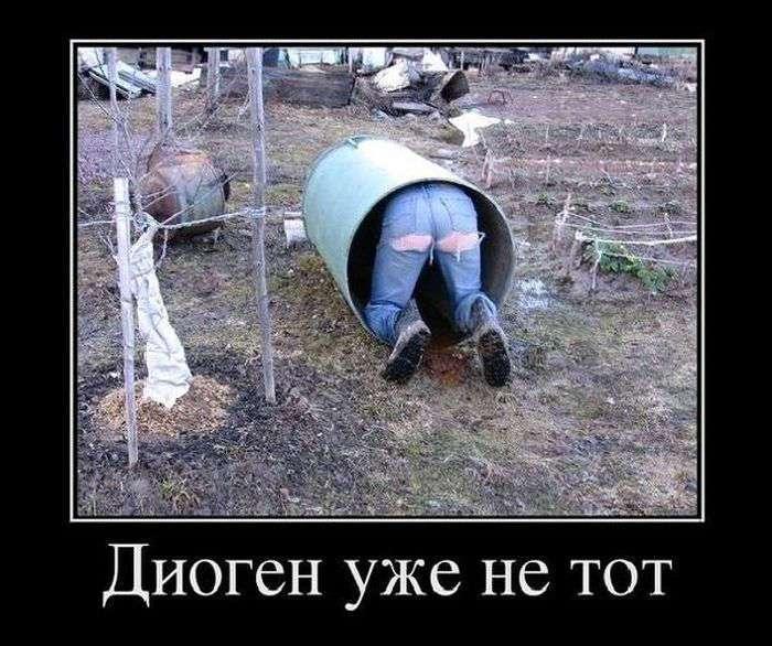 Воскресные демотиваторы 26.2.2017
