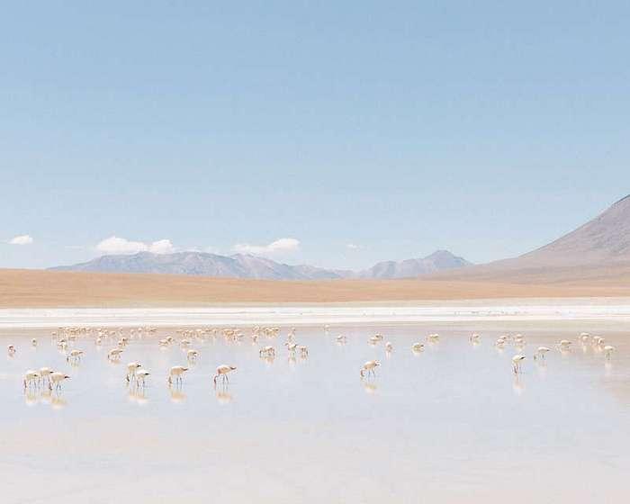 Южная Америка: далёкая и неизведанная