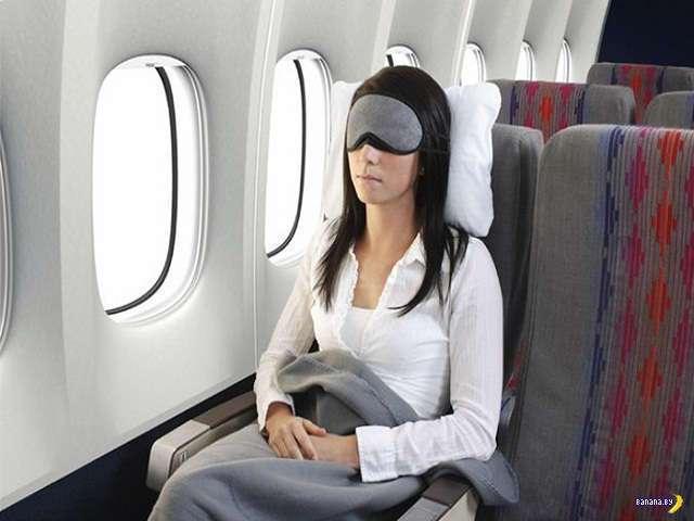 Война за плед в самолёте
