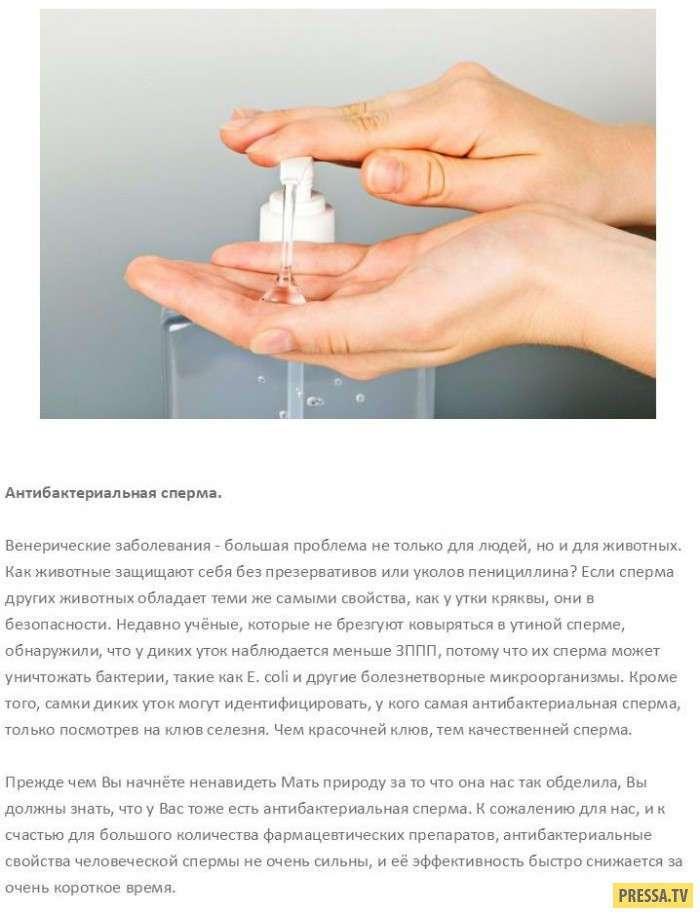 ТОП-10 научных и не очень вариантов использования спермы (11 фото)