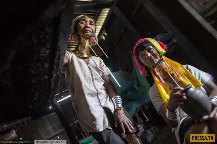 Карены народность в Бирме известные благодаря экзотическому виду (8 фото)