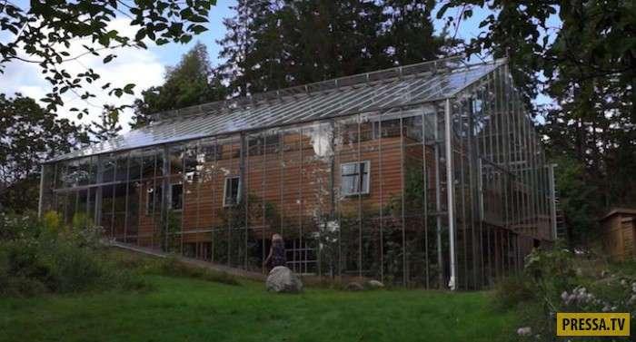 Дом внутри теплицы (8 фото+1 видео)