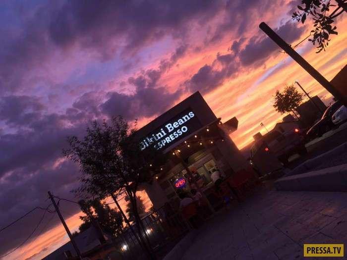"""""""Bikini Beans Espresso"""" - американское кафе с официантками в бикини (12 фото)"""