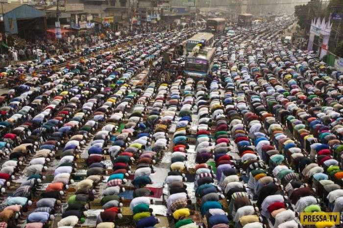 Массовые религиозные церемонии (21 фото)