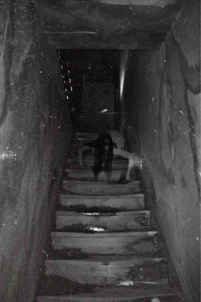 Если вас легко напугать, то лучше не смотреть