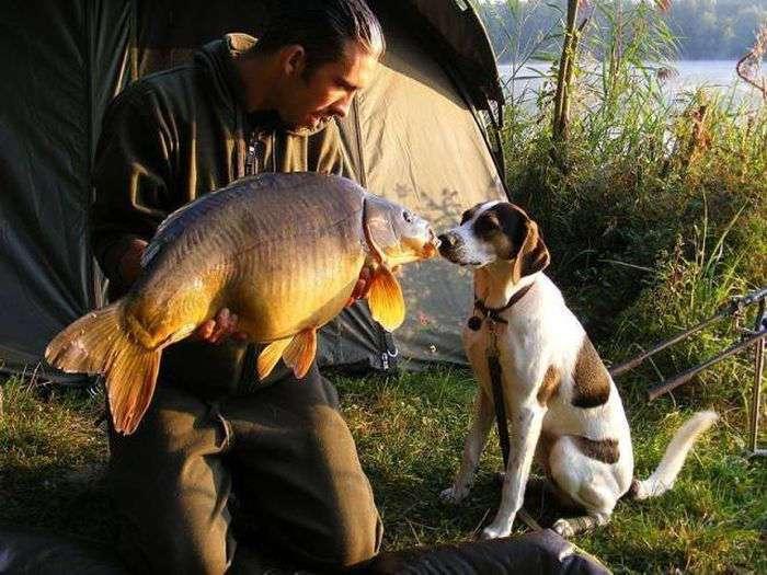 Прикол рыболовы