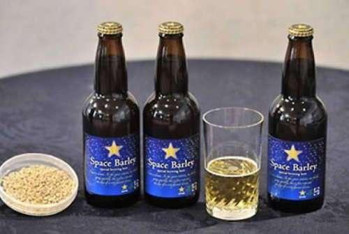 Топ-10: самое дорогое и необычное пиво в мире