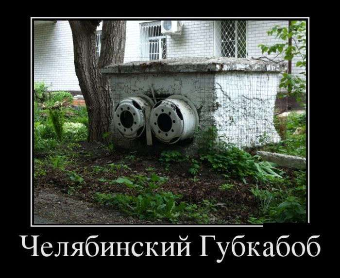 Демотиваторы N1570 (30 фото)
