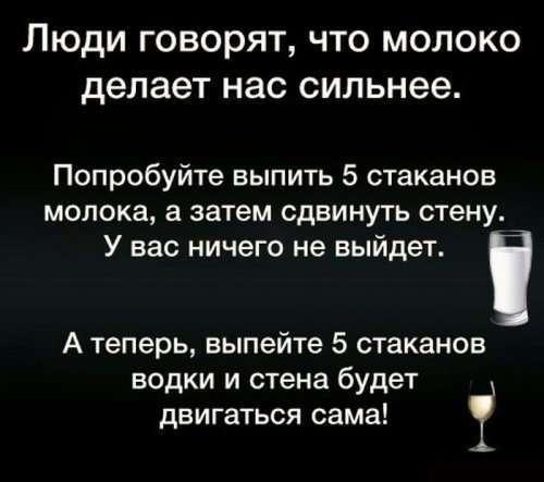 Приколы про алкоголь (25 фото)