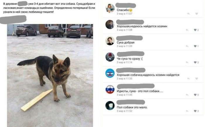 Скриншоты из социальных сетей. Часть 429 (32 фото)