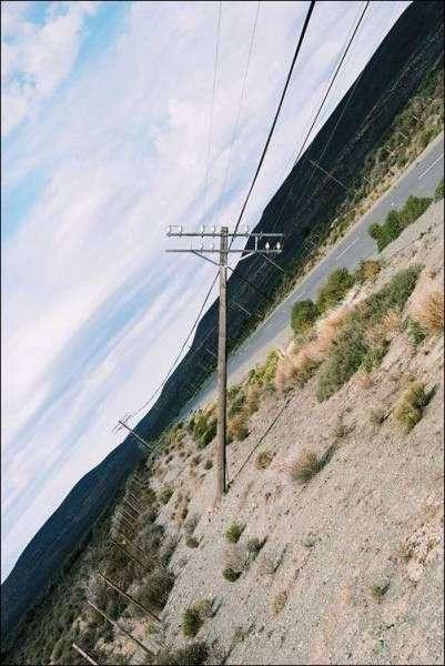 Подборка прикольных фото N1576 (104 фото)
